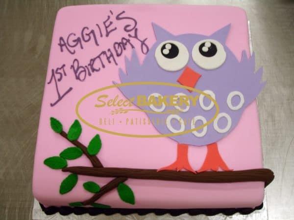 Birthday Cake - Owl 399