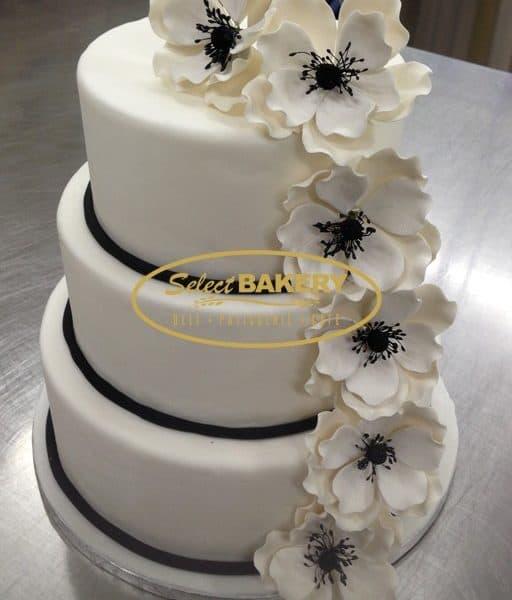 Wedding Cake - White Flower