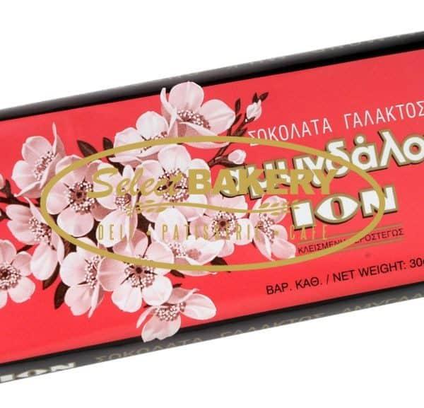 ION ALMOND CHOCOLATE 100G