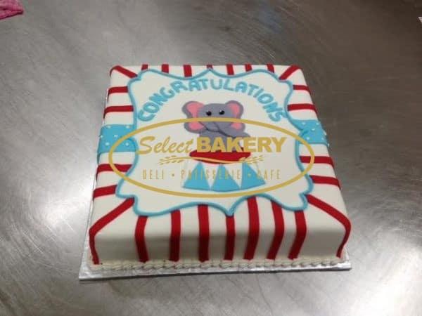 Baptism Cake Elephan Circus 496