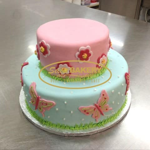 Birthday Cake - Minni Mouse 401