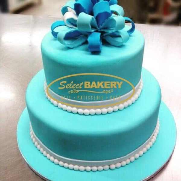 Birthday Cake - Blue Gift 506