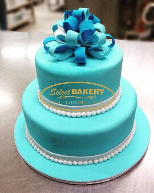 Birthday Cake - Blue Gift 506