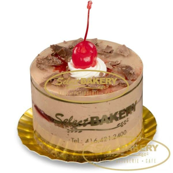 3 layers of chocolate sponge cake filled with chocolate mousse and a sour cherry filling