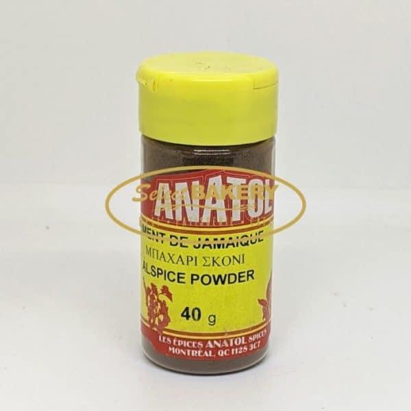 ALSPICE-POWDER-40g